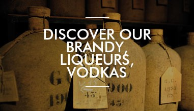 Discover our other alcools